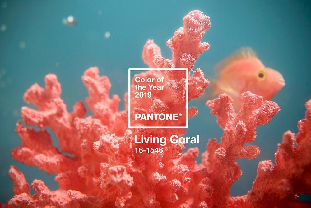 Papiertischdecke, patide, Tischdecke, colour of the year 2019, living coral, Event, Veranstaltung, Party, Raumkonzept, Feier,